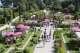 Roses and plants festival villa et jardins ephrussi de for Le jardin de la france